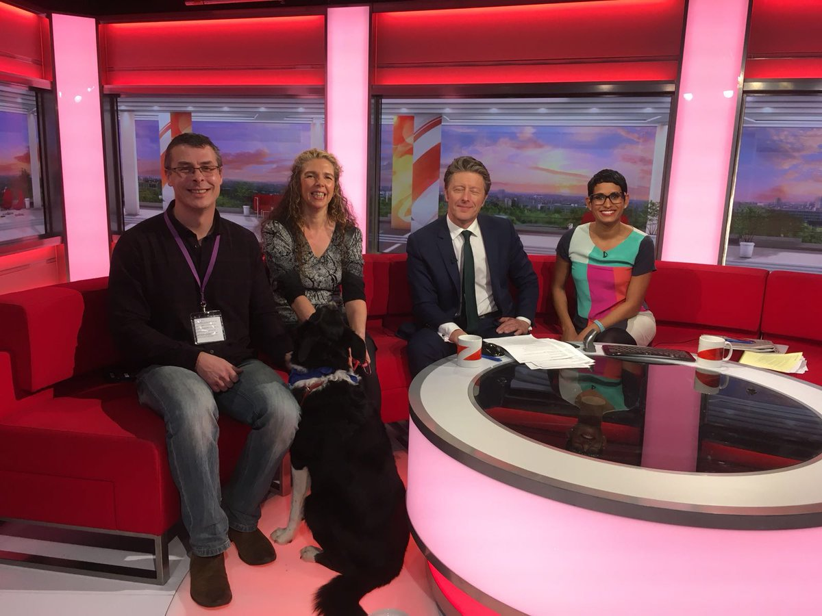 Image result for molly therapy dog bbc breakfast